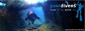 ponidivers